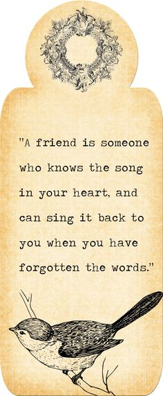 This is one of my favorite friendship quotes of all time. I saw it on a billboard, once- and it has inspired me ever since. Not many people are able to fit this criteria- but the ones who are, are worth keeping.
