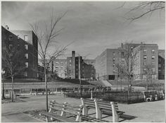 The landmarked Harlem River Houses were the first federally-funded, federally-built, and federally-owned housing project in New York City, commended for its physical planning and sense of community. Pictured, Samuel H. (Samuel Herman) Gottscho (1875-1971), [Harlem River Houses] Court facing Harlem River, 1936. Museum of the City of New York. 41.239.2.