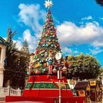 """Limassol, Cyprus 🇨🇾 Λεμεσός στο Instagram: """"Limassol Marina Don't forget to like #LimassolCY on Facebook! Photos by @giotheod"""" Limassol, Cyprus, Christmas Tree, Facebook, Holiday Decor, Instagram, Teal Christmas Tree, Xmas Trees, Christmas Trees"""
