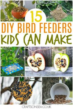 easy bird feeders for kids to make #kidsactivities #kidscraft #craftsforkids #nature