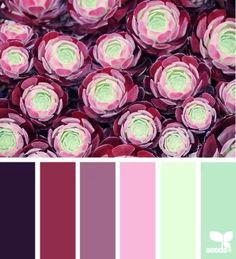 Fantastic color palette. I absolutely love this mix of berry, pink, purple, & mint hues!