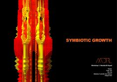 Exploration of Cellular Automaton to create symbiotic growth of different species.