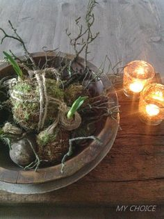 Bloembollen in een schaal.. Rustic Charm, Rustic Style, Modern Rustic, Ikebana, Natural Living, Flower Decorations, Table Decorations, Christmas Plants, In Natura
