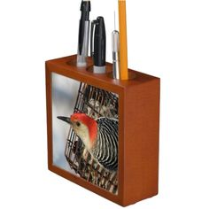 Red-Bellied Woodpecker Pencil Holder