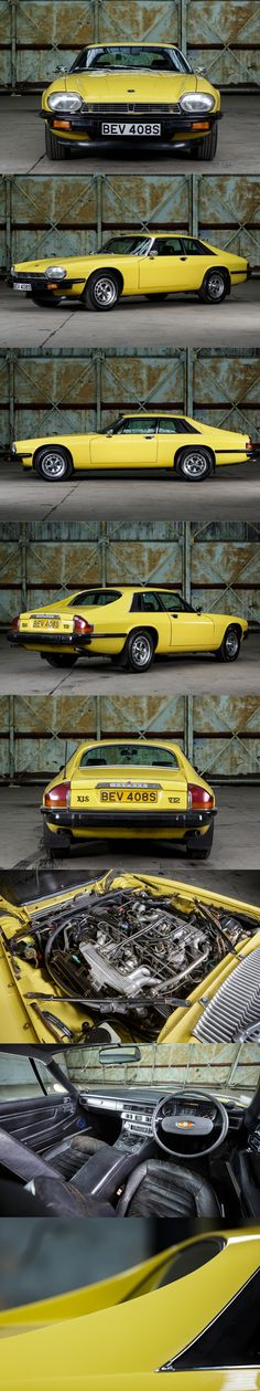 1977 Jaguar XJS V12 / Cotwold yellow / Pendine.co / UK