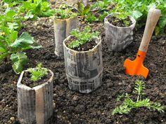 How to Make Biodegradable Pots Flowers, Plants & Planters