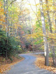 Little Shepherd Trail in Fall - Putney, KY