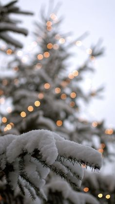Xmas Wallpaper, Christmas Phone Wallpaper, Wallpaper Backgrounds, Winter Iphone Wallpaper, Christmas Aesthetic Wallpaper, Winter Snow Wallpaper, December Wallpaper Iphone, Winter Wonderland Wallpaper, Soft Wallpaper