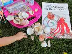 Gluing beads, etc. onto real shells, similar to how Hermit Crab decorates his shell