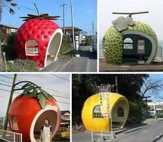 Giant fruit shaped bus stops