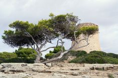 Mallorca Vakantie Monument Valley, Grand Canyon, Nature, Travel, Majorca, Naturaleza, Viajes, Trips, Off Grid