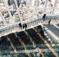 The Skygarden, London