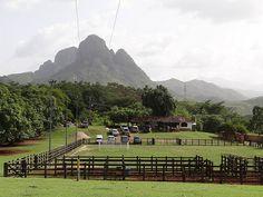 Los Morros de San Juan. Guarico. Venezuela. Monumento Natural Los Morros de San Juan. Parque Nacional Aristides Rojas. San Juan de los Morros en el Estado Guarico.http://es.wikipedia.org/wiki/San_Juan_de_Los_Morros