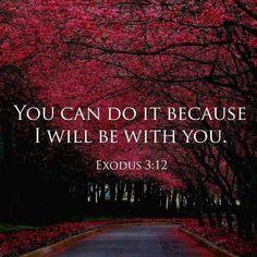Quotes bible children scriptures ideas for 2019 Prayer Scriptures, Prayer Quotes, Bible Verses Quotes, Faith Quotes, Now Quotes, Quotes About God, Quotes For Kids, Quotes Children, God Loves You Quotes
