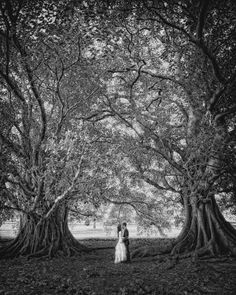 Bride and groom with surreal trees - Jonas Peterson