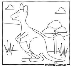 kangaroo Colouring in
