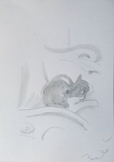 MIMI the CAT sleeping in the armchair life pencil drawing great gift for animal lover woman friend child unique artwork directly from artist