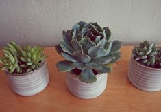 Roundup: 18 DIY Planters, Pots and Other Decorative Ideas | Curbly