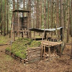 Bushcraft castle what will you call it? Have you tried making one shelter? @globaloutdoorsurvivalclub . : @taoutdoorofficial #globaloutdoorsurvivalclub via @globaloutdoorsurvivalclub