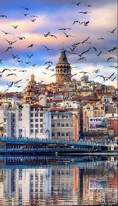 The GalataTower in Istanbul, Turkey. The GalataTower in Istanbul, Turkey.-- Begin Yuzo --><!-- without result -->Related Post Decoration with butterflies Duck Boy Dianne Dengel Print London Photography, Travel Photography, Istanbul City, Visit Istanbul, Istanbul Travel, Visit Turkey, Turkey Travel, Culture Travel, London City