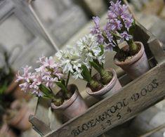 Hyacinth. Dollhouse & Miniature ROSY, Yukari Miyazaki