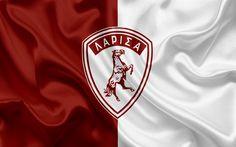 Download wallpapers AEL Larissa FC, 4k, Greek football club, emblem, logo, Super League, championship, football, Larissa, Thessaly, Greece, silk texture, flag
