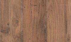 Bayview - Gingerbread Chestnut Wood Laminate, Laminate Flooring, Hardwood Floors, Flooring Ideas, Mohawk Flooring, Living Room Flooring, Gingerbread, House Design, Bedroom Ideas