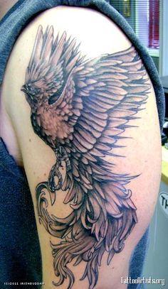 phoenix tattoo   Phoenix tattoo