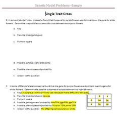 These problems include 3 single trait, 2 dihybrid, 3 incomplete dominance, 3 co-dominance, 2 multiple alleles, 2 poly genetic trait and 3 sex-linked crosses.  Students will work the genetic models to better understand the concept of inheritance.  The exploration includes teacher notes, student problems and answer key.