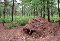Emergency Survival Shelters in the Wilderness http://www.pittsburghskinnywraps.com/ or https://www.facebook.com/#!/pittsburghskinnywraps #itworks #skinnywrap #health #fitness #livelonger #homebusiness #makemoney #workfromhome #healthy #allnatural #skinproducts #tighten #tone #fatfighter #loseweight #stretchmarks #Pittsburgh #sahm #wahm #livingdebtfree #vitamins #proteinshakes #mealsupplements