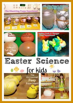FUN Easter Science for kids - experiment, explore & create with marshmallow peeps and eggs