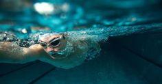 La natation est excellente pour les personnes souhaitant reprendre une activité physique en douceur. Discipline non traumatisante pour les articulations, elle permet aussi de renforcer votre musculature et votre système cardiovasculaire. Découvrez avec Gu