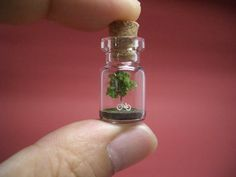 A tree and a white bike in a tiny bottle.