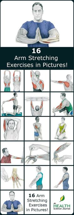 We have a new entry into our stretching series. Today we'll present 16 illustrations of arm stretching exercises showing you exactly which muscle you are exercising. By demonstrating where on your body you should feel the highest tension we hope to help Fitness Workouts, Lower Ab Workouts, Butt Workout, Fitness Tips, Fitness Motivation, Health Fitness, Week Workout, Cardio Workouts, Exercise Motivation