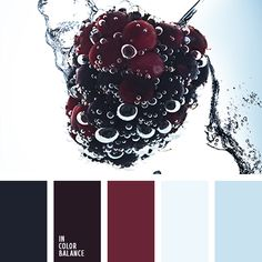 Berry Mix: blueberries, blackberries, raspberries and all this combined with the cold, natural shades of blue. Tasty, harmonious color range finds its application in the interior of a restaurant or cafe, female sites and modern classical suits.