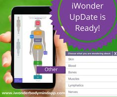 This free update includes questions for Skin, Blood, Bones, Muscles, Lymphatics, Nerves, Uterus, Prostrate and Hips!