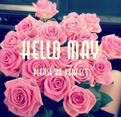hello may   Words • Quotes • Sayings