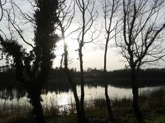 Lough Lannagh, Castlebar, Ireland