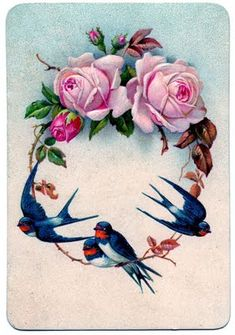 decoupage *The Graphics Fairy LLC*: Vintage Graphic - Stunning Swallow Birds with Pink Roses Vintage Ephemera, Vintage Cards, Vintage Paper, Vintage Postcards, Vintage Pictures, Vintage Images, Idda Van Munster, Vintage Rosen, Swallow Bird