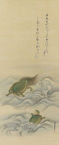 Green Hair Tortoise by Tsurusawa Tansaku (-1797) . Japanese Hanging Scroll