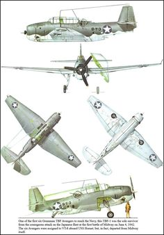 Navy Aircraft, Ww2 Aircraft, Fighter Aircraft, Military Aircraft, Illustration Avion, Scale Models, Aircraft Painting, Ww2 Planes, Aviation Art