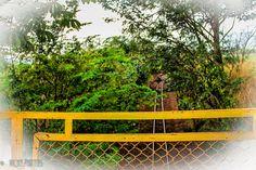 """""""Desde que minha vida saiu dos trilhos, sinto que posso ir a qualquer lugar.""""(Zack Magiezi) #pontedagabiroba #gabiroba #trilho @vicky_photos_infantis https://www.facebook.com/vickyphotosinfantis http://websta.me/n/vicky_photos_infantis https://www.pinterest.com/vickydfay https://www.flickr.com/vickyphotosinfantis"""