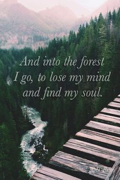 Forest words --yes so true I feel like I'm at home in the forest or up in the mountains it's just a place where I can lose myself and say my thought out loud or sing as loud as I can I love the Scenery and how fresh the air is