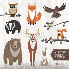 Set of vector forest animals Royalty Free Stock Vector Art Illustration