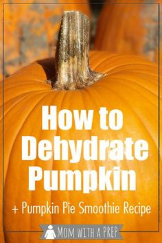 Mom with a PREP   Love pumpkin and want to use it all year long? Learn how to roast, puree, dehydrate, rehydrate pumpkin + a make your own pumpkin pie smoothie recipe!