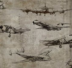 Flight Taupe wallpaper by Sidney Paul