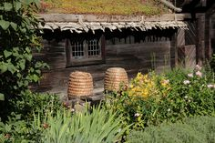 straw hives! In Sweden!