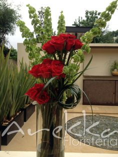 Terrazas Rosas Rojas