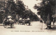 Bois de Boulogne - Paris 16ème