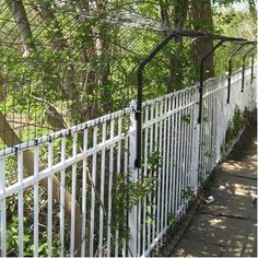 Houdini Proof Dog + Gates that keep dogs that can jump + climb out of the fence from doing just that - their fence system keeps the dog from jumping over it!  Neat product if works - looks like it might. Sell complete fence kits with gate options and an available installation DVD